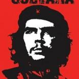 מהפיכה אינה תפוח שייפול כשיבשיל